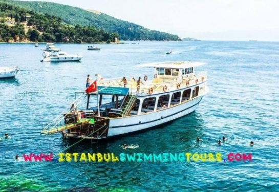 http://www.istanbulswimmingtours.com
